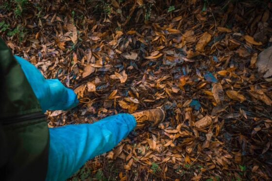 How To Choose The Best Salomon Hiking Shoes? A Complete Guide