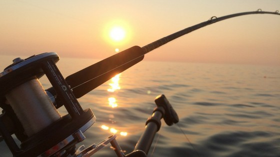 An Ultimate Guide About Choosing A Fishing Rod